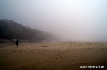 A foggy walk on Beverly Beach