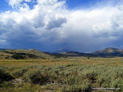 A Yellowstone moment.