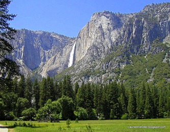 What we expected to see in Yosemite