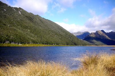 Takahe_valley.jpg