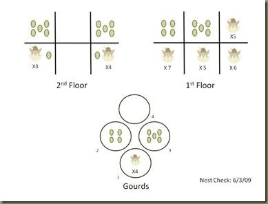 6-3-09 Nest Check
