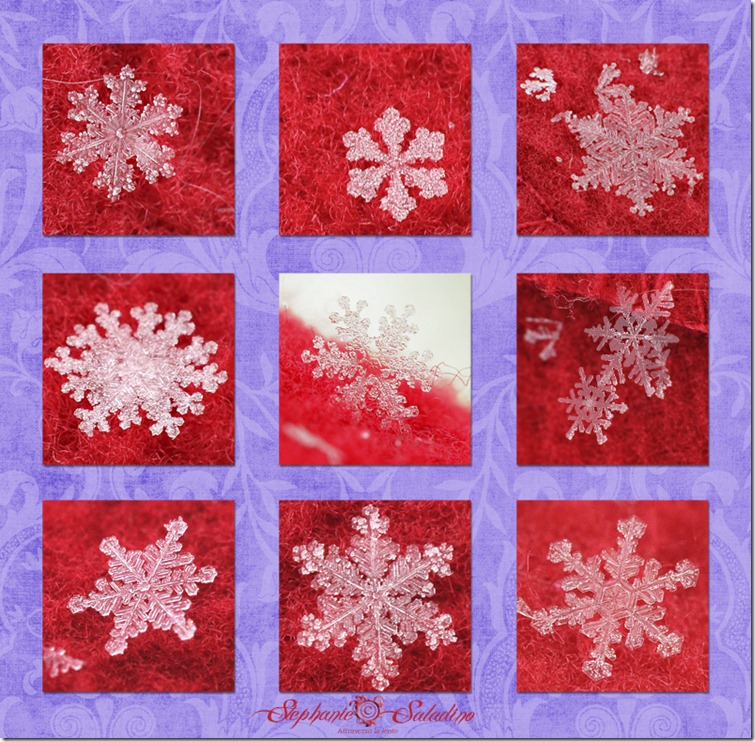 blog board of snowflakes watermarked 1-23