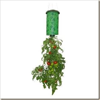 hang planter