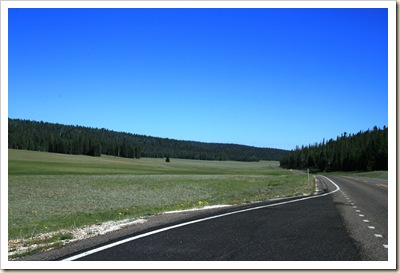 Meadow on Hwy 67 - Kaibab Natl Forest