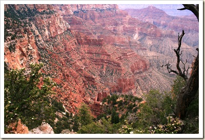 View from Cape Royal 2- Grand Canyon NP
