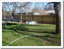 Yard May 4 2011 (4) (Medium)