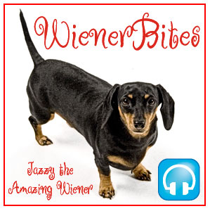 WienerBites Podcast Album Cover