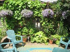 Jim Charlier's Garden