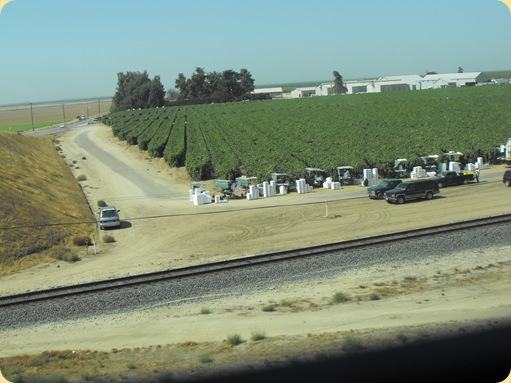 The Esparzas On The Road Merced To Bakersfield Ca