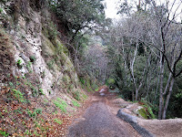 Paved Road to Bottom of Canyon Photo