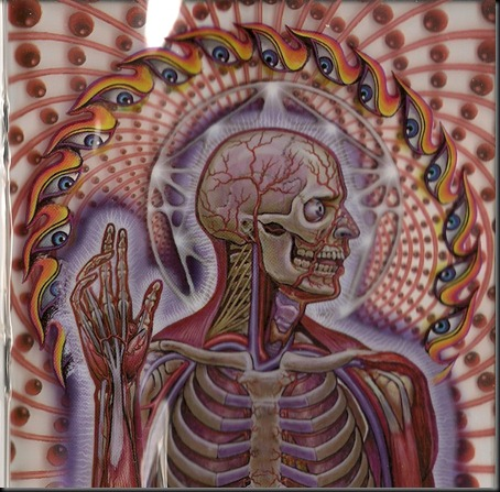 Lateralus5