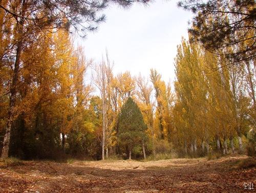 Sierra en Octubre 012