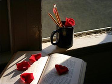 un-libro-y-una-rosa1