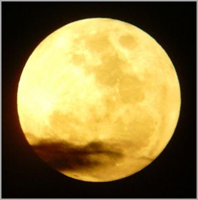 209140_yellow_moon