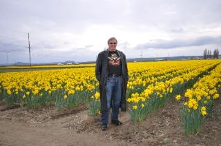 Bill Daffodils