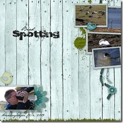 birdspotting090412