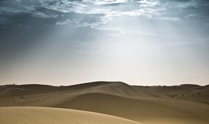 Abu Dhabi Desert Landscape (4 of 6)