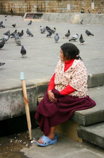 Bird Lady Bogota-2