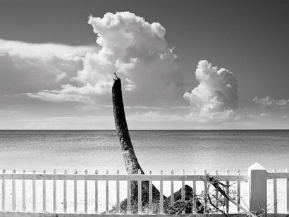 Grenada after Hurricane Ivan  (53 of 53)
