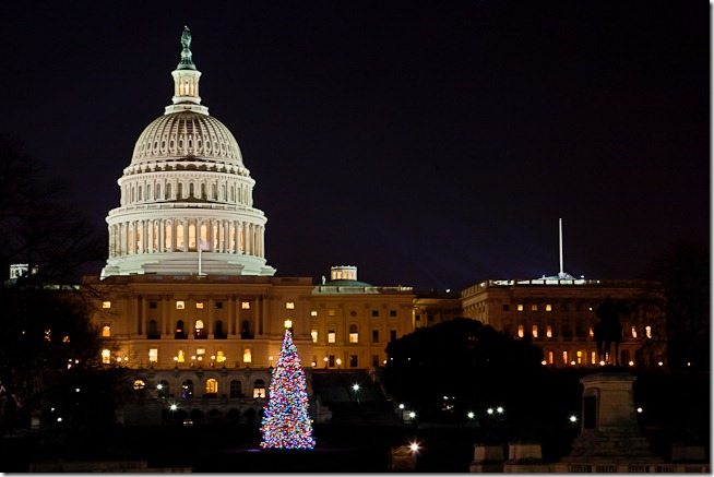 Capitol Christmas Tree at Night