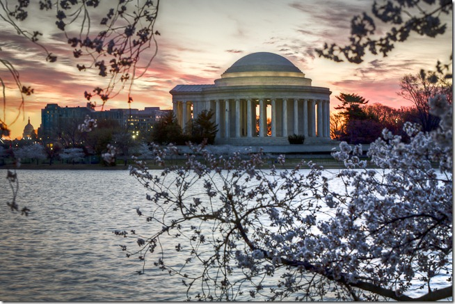 Washington Cherry Blossoms at Sunrise-5