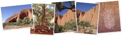 View Mala Walk - Uluru, NT