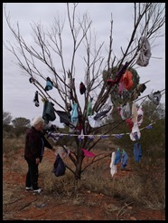 Red Centre Way Junction_Undie Tree
