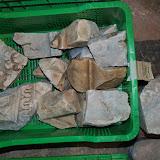 marbres 3.JPG