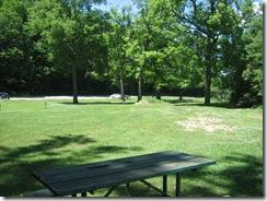picnic 004