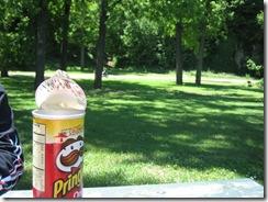 picnic 002
