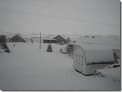 snow2 001