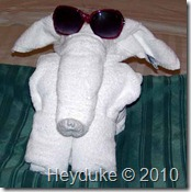 elephant towel