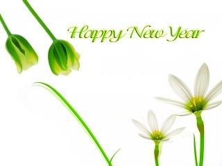 [Happy New Year 2011_32572.jpg_thumb[5].jpg]