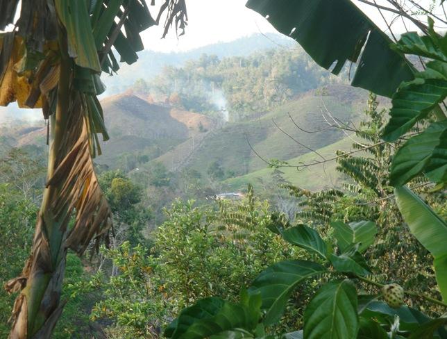 Honduras 2011 013 (3)