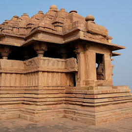saas-bahu temple by Dev Banerjee - Buildings & Architecture Statues & Monuments