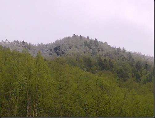 juni2010 002