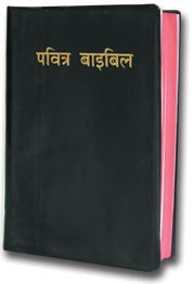 Hindi, Audio Bible, New Testament