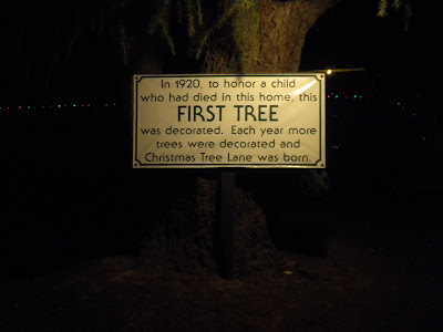 This Is The Tree That Started Christmas Tree Lane: