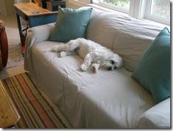 sofa cover 007