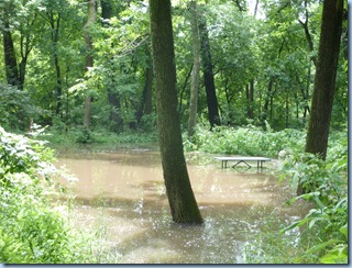 Astico Flood 10