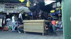 Bangkok.Adrenaline.(2010][Dvdrip][V.O.S.E] - (11.54.4)
