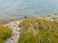 Mt Washington- Tuckerman Ravine Trail 1875.JPG