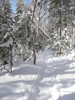 Hurricane Mt- sentier 3614.JPG Photo