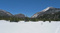 Lake Colden, Mt Colden 3740.JPG