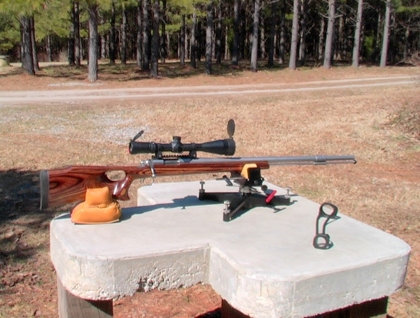 Remington 700 - Custom Stock