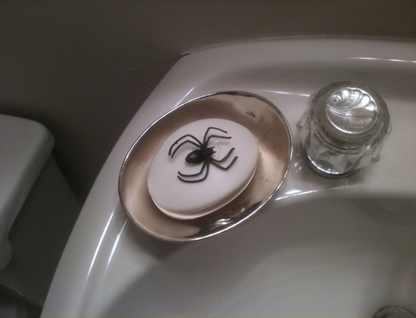 spidersoap