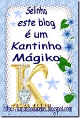 selinho3[2]
