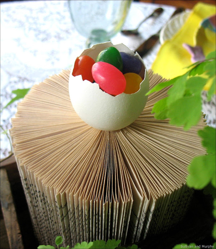 egg on book