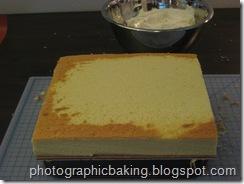 Cake base gets started