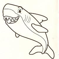 tubarão.jpg